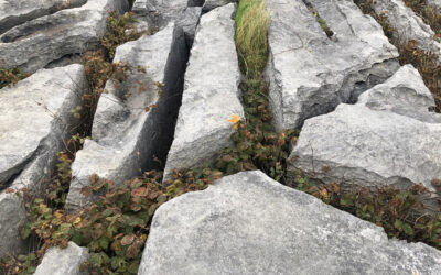 Oct 2021: Live Studio Update from The Burren, Co. Clare/ What Inspires Artists?
